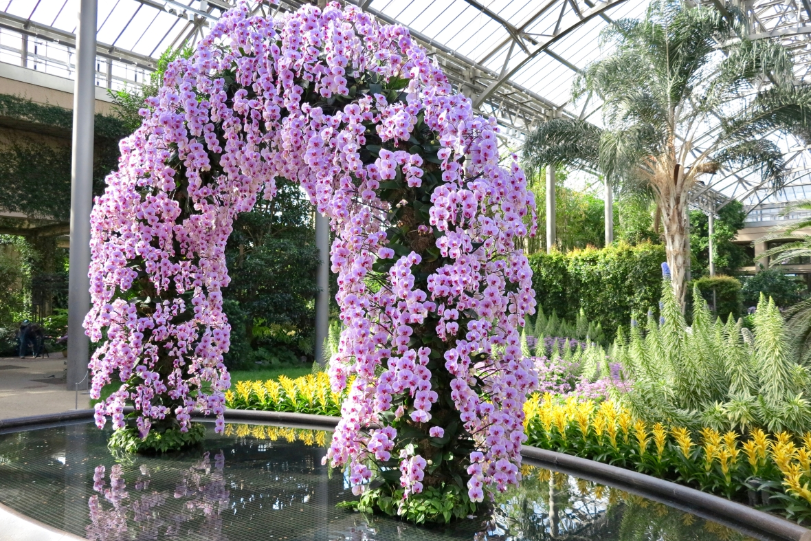 Philadelphia flower show 2018 where to stay dine and - Places to eat near longwood gardens ...