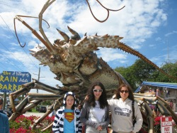 Ocean Reef 2010 (14)